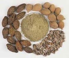 Ayurveda Wellness Guide: Triphala Powder Benefits