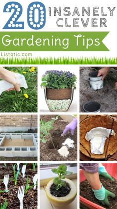 20 Insanely Clever Gardening Tips......http://homestead-and-survival.com/20-insanely-clever-gardening-tips/