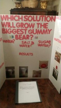 5th grade science fair project which solution will grow the biggest gummy bear