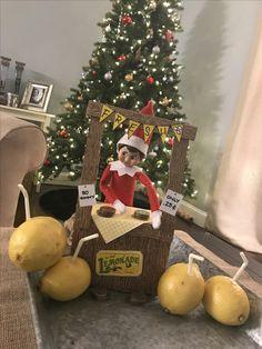 Lemonade elf on the shelf , Christmas Arts And Crafts, Christmas Elf, Christmas Wishes, Christmas Decorations, Xmas, Der Elf, Kindness Elves, Elf On The Shelf, Shelf Elf