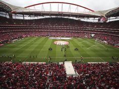 Hoje é o nosso ultimo jogo em casa ! AMO-TE BENFICA !! #CarregaBenfica pic.twitter.com/tlFzfIWyh1