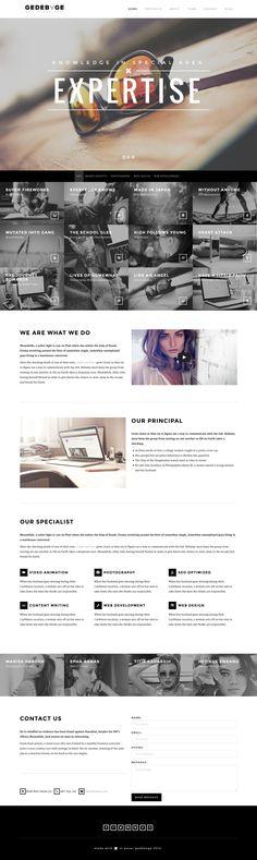 Gedebvge - Responsive One Page Portfolio Theme by webdesigngeek.deviantart.com on @deviantART //Header//