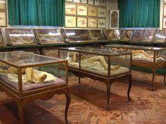 The Lady Anatomist: The Incredible Wax Sculptures of 18th-Century Artist-Scientist Anna Morandi Manzolini | Brain Pickings