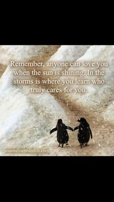 This quote is so true! everyone is there for the party but not the rain. but the rain always passes! the pengiuns holding hands make my heart melt!