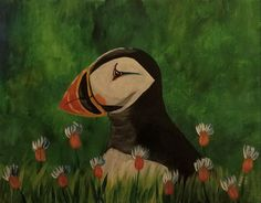 Puffin 11x14 canvas Acrylic