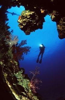 Deep Ocean Diving - Cave Diving. Deep Ocean Diving offers technical diving expeditions to both inland and coastal dive sites, with the focus on mixed gases, rebreathers, wrecks and caves. Technical dive training is offered at all levels.