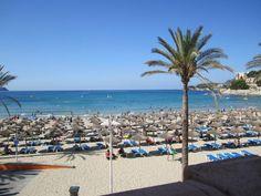 Der wunderschöne Badeort Peguera ist perfekt für Familien mit Kindern geeignet. Er liegt im Südwesten von Mallorca und wird in der kastilischen Sprache auch Paguera genannt. Der Ort hat etwas weniger als 4.000 Einwohner und bewahrte sich seinen eigenständigen Charakter bis heute.