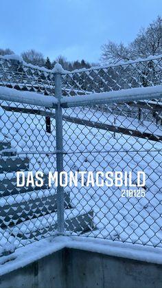 the monday picture 210125 - das montagsbild 210125 'wintermorning' by sueessART