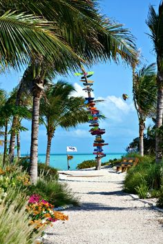 Long Bay Beach, Turks Caicos