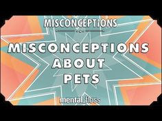 """Misconceptions about Pets This week, Elliott discusses some misconceptions about pets. By: Mental Floss. Support: http://store.mentalfloss.com/ (enter promo code: """"YoutubeFlossers"""" for 15% off!)"""