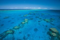 Discover the largest natural wonder of the world, the Great Barrier Reef.