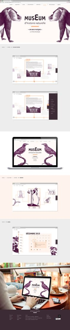 Refonte du site web du museum d'histoire naturelle de Nantes.(Projet fictif)