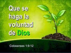 HACER LA VOLUNTAD DE DIOS ES LO MÁS IMPORTANTE
