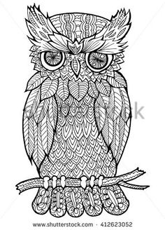 Cartoon, hand drawn, vector doodle illustration of owl. Motive of wildlife