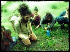 Return to Nature - great videos from Dan Farella :) WILD HARVESTING