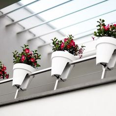 De beste balkonbakken om een moestuin in te beginnen. Elho Flower Bridge Pure.  balkonbakken, balkon moestuin,groenten kweken, kruiden kweken, fruit kweken, balkon railing,  balkon ontwerp, moestuin bak, elho, flower bridge