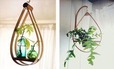 Neat plant hangers.