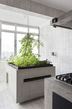 Today we love to show you this concrete kitchen in a renovated apartment in Sao Paulo, Brazil. Kitchen Workshop, Studio Kitchen, Kitchen Design, White Wood Kitchens, Cool Kitchens, Boston Interiors, Design Interiors, Cocinas Kitchen, Concrete Kitchen