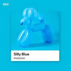 Wix color palette inspiration | Silly Blue #e6e6e6