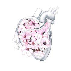 Illustration - illustration - Flower heart www. illustration : – Picture : – Description Flower heart www.creativeboysc… -Read More – Arte Com Grey's Anatomy, Anatomy Art, Art And Illustration, Blake Edwards, Anatomical Heart, Human Heart, Heart Art, Body Art, Artsy