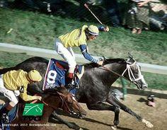 Kentucky Derby Winner 1988 Winning Colors