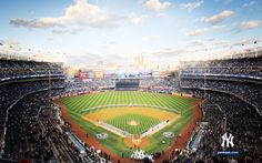 Such a gorgeous field! I will make it there some day!