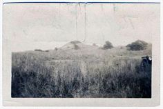 Photograph of the mound battery at Fort Fisher, Item from the collection of the N. Museum of History. Used courtesy of the N. Department of Cultural and Natural Resources. Southport, Natural Resources, State Parks, North Carolina, Fisher, 1960s, Photograph, Museum, History