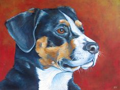 Custom Pet Portrait in Acrylic Painting on by bethanysalisbury, $280.00