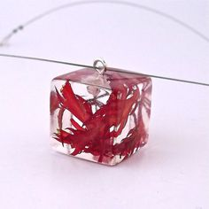 Hey, I found this really awesome Etsy listing at https://www.etsy.com/listing/118154629/red-resin-necklace-with-real-flowers