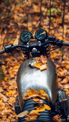 Bare metal + autumn vibes 🍂 #cb750 #caferacer #autumnleaves Cb750 Cafe Racer, Cafe Racer Bikes, Cafe Racer Motorcycle, Honda Cb750, Cyberpunk 2077, Moto Style, Advertising Design, Cool Bikes, Motorbikes