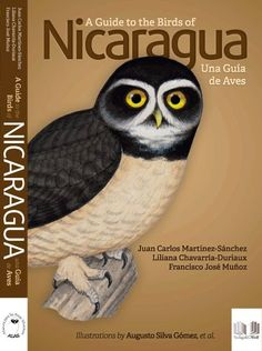 birds of nicaragua a field guide zona tropical publications