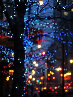 Night Lights Colors Photography Trees