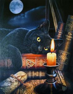 - Black Cat Magickal Greeting Card. - Witching Hour Black Cat Greeting Card - Blank Inside. - This gorgeous black cat gazes into the candlelight, propped up on his pile of magickal books. - Beautiful