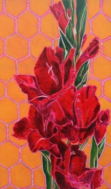 Gladiolus on the net