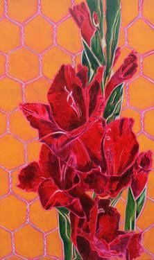 Gladiolus on the net