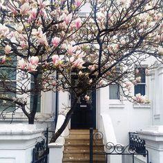 instagram.com/London