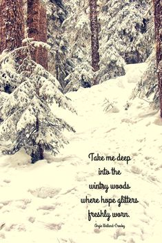 Winter Quotes to Make the Soul Sparkle a forest with snow and a winter quote…Take me deep into the wintry woods where hope glitters freshly worn. Ice Quotes, Snow Quotes, Winter Quotes, Black Quotes, Girly Quotes, Quotes Quotes, Snowy Pictures, Nature Pictures, Carpe Diem