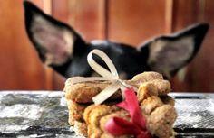 Biscoitinho caseiro para cachorros