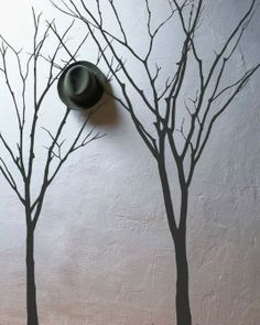 love the stark simplicity of trees on a pale wall........