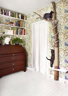 Мебель для кошек: креативное дерево