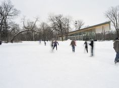 Vital Park is one of three regional parks original to the City of Winnipeg. Designed by George Champion, the 115 acre ha) park features a dense riparian. Park Pavilion, Acre, Architecture, City, Outdoor, Design, Arquitetura, Outdoors, Mornings