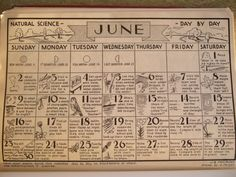 Nature Calendar: June (plus all the other months too).  Endless ideas to appreciate and acknowledge the many seasonal changes we witness in a year's time.  Including things to look for, activities to do, etc.  I love the old-fashioned look -- so charming.  From Natural Science Through the Seasons: 100 Teaching Units.