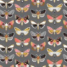 111106031 Mariposa Grey Harmony by Jessica Swift for Blend Fabri