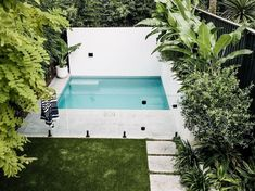 Expertly balanced proportions and clever combinations of colour and texture have turned this ordinary little backyard into a sophisticated sanctuary. Sydney Gardens, Beach Gardens, Balcony Garden, Garden Pots, Outdoor Pots, Outdoor Decor, Coogee Beach, Plunge Pool, Pool Designs