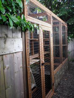 Outdoor cat enclosure Beautiful World Living Environments www.abeautifulwor...