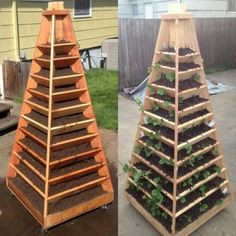 great idea for vertical gardening