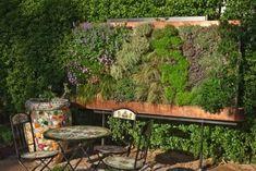 Maintenance Tips For Vertical Gardens