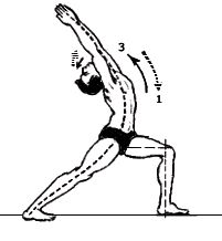 Veerasana : Warrior Pose