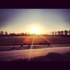 Just  outside our beautiful Amsterdam...   #mmousse #Haarlem #sunrise #countryside