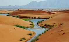 Al Ain, United Arab Emirates (The Empty Quarter)